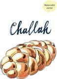Watercolor jewish braided challah Stock Photos