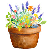 Watercolor jug with flowers Stock Photos