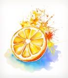 Watercolor που χρωματίζει το juicy πορτοκάλι Στοκ Φωτογραφία