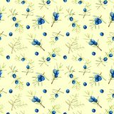 Watercolor juniper branches seamless pattern. Hand painted on a yellow background Royalty Free Stock Image