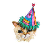 Watercolor  Kitten HEAD IN PARTY HAT Stock Photography