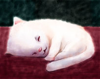 Watercolor Kitty. Digital watercolor painting of a white kitten curled up sleeping Stock Images