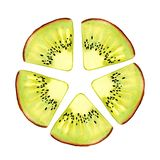 Watercolor kiwi fruit. Juicy pulp and seeds for print design, banner, poster, cover, invitations, greetings, weddings royalty free stock images