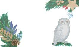 watercolor La composición de la Navidad de las ramas del abeto, conos, bayas rojas, se va con un búho libre illustration