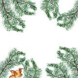 watercolor La guirlande de Noël du pin s'embranche avec des oreillons jaunes illustration stock