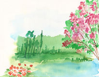 watercolor lake and cherry blossom Royalty Free Stock Photo