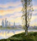 Watercolor landscape. Autumn poplar at quiet river Royalty Free Stock Photos