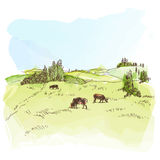 Watercolor landscape with cows Royalty Free Stock Photos