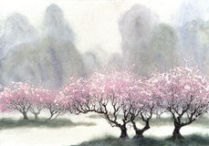 Watercolor landscape. Flowering trees near the river. Watercolor landscape. Delicate flowering trees near the river on a misty cool spring day Stock Photography