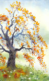 Watercolor landscape. Old autumn tree in foggy day Stock Images