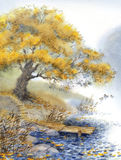 Watercolor landscape. An old tree near the pond Royalty Free Stock Photo