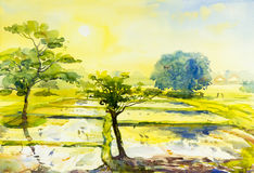 Watercolor landscape original painting colorful of fields sun. And emotion in sky,cloud background Stock Images