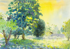 Watercolor landscape original painting colorful of garden and em Royalty Free Stock Images
