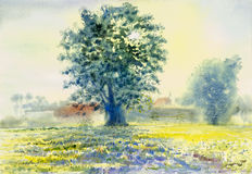 Watercolor landscape original painting colorful of morning sun Stock Photo