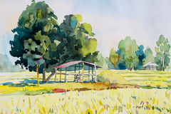 Free Watercolor Landscape Original Painting  Colorful Of Cottage And Rice Field. Stock Photography - 85408442