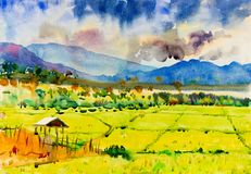 Watercolor landscape painting colorful of cottage and rice field. Watercolor landscape original painting on paper colorful of cottage and rice field in the Royalty Free Stock Photo