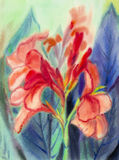 Watercolor landscape painting colorful of canna lily flowers Stock Images