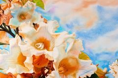 Watercolor landscape painting colorful of Herald trumpet flowers Royalty Free Stock Images