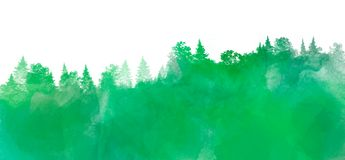 Watercolor landscape with pine and fir trees in green color, abstract nature background on white, forest template stock images