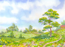 Watercolor landscape summer day. Tall oak tree beside the path. Watercolor landscape merry sunny summer day. Tall oak tree beside the path leading down the hill Royalty Free Stock Image