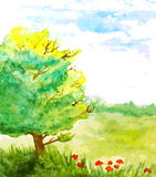 Watercolor landscape with tree, flowers and sky. Vector illustration Stock Photography