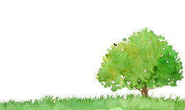 Watercolor landscape with tree Royalty Free Stock Image