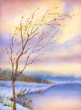 Watercolor landscape. Yellowed tree over snow-covered lake Royalty Free Stock Images