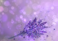 Watercolor lavender bouquet. Lavender flowers, watercolour splashes on purple background with bokeh effect. Purple green hand drawn botanical illustration. For royalty free stock photos