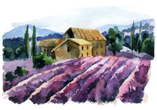 Watercolor lavender field landscape. Summer in Provence, France. Hand painted countryside illustration Stock Photos