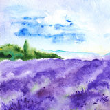 Watercolor lavender fields nature France Provence landscape Royalty Free Stock Image