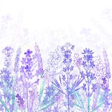 Floral background with  lavender flowers and place for text. Watercolor illustration on a white background. Watercolor lavender flowers on a white background Stock Images