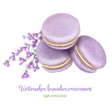 Watercolor lavender macaroons stack Royalty Free Stock Photography