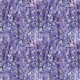 Watercolor lavender pattern Stock Image