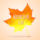 Watercolor leaf Royalty Free Stock Images