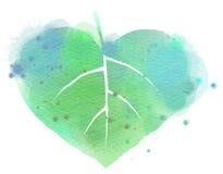 Watercolor leaf  heart symbol Stock Image