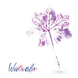 Watercolor leaf. Painted by hand.  Isolated object. Watercolor natural leaf made in the original technique. Eco logo, creative work. Isolated object on a white Stock Photography