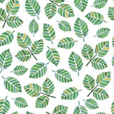 Watercolor leaf seamless pattern. On white background Royalty Free Stock Image