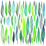 Watercolor leafs set. Vector set of watercolor leafs. Isolated nature elements, grouped by objects Stock Image