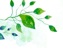 Watercolor leaves Royalty Free Stock Image