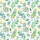 Watercolor leaves branch seamless pattern on white background. Texture with greens,branch,leaves,flowers,foliage.Perfect for wedding,cover design,wallpapers royalty free illustration
