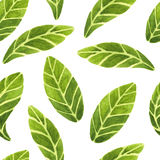 Watercolor leaves pattern Royalty Free Stock Photography