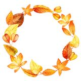 Watercolor leaves round frame. Royalty Free Stock Photography