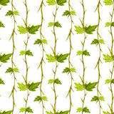 Watercolor leaves seamless pattern. Hand paint background. For wrapping paper, textile and package design Royalty Free Stock Photography