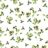 Watercolor leaves seamless pattern. Watercolor mix leaves seamless pattern Vector Illustration