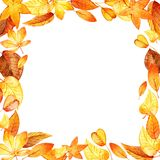 Watercolor leaves square frame Stock Photos