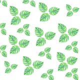Watercolor leaves summer green pattern isolation gentle drawing wallpaper royalty free illustration