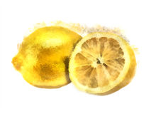 Watercolor lemon Stock Photo