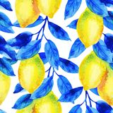 Watercolor lemon fruit branch with bright blue leaves seamless pattern. Lemon citrus tree on white background. Hand painted illustration vector illustration