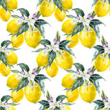 Watercolor lemon pattern royalty free illustration