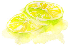 Watercolor lemon Stock Photography